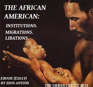 the african american ebook pic